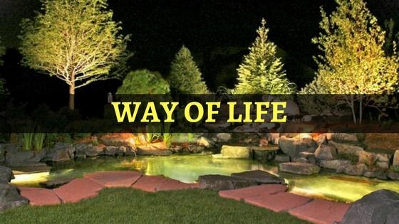 way-life